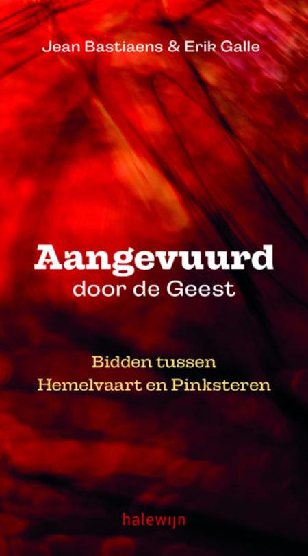 AANGEVUURD DOOR DE GEEST - bidden tussen Hemelvaart en Pinksteren