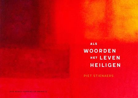 ALS WOORDEN HET LEVEN HEILIGEN - Piet Stienaers - Don Bosco