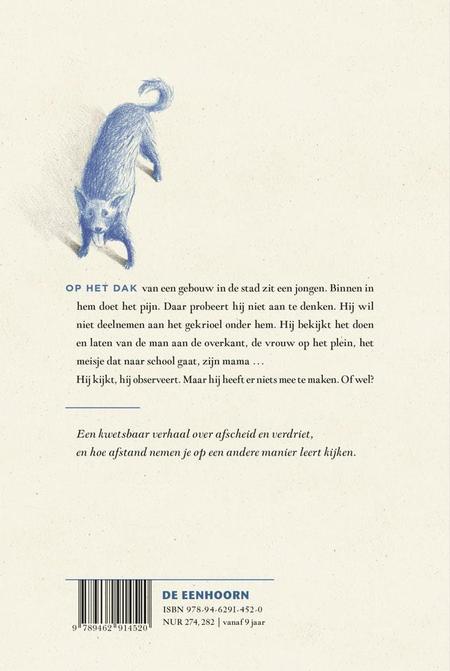 DE JONGEN OP HET DAK - Aline SAX / Sassafras De Bruyn