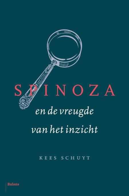 SPINOZA EN DE VREUGDE VAN HET INZICHT  - K. Schuyt