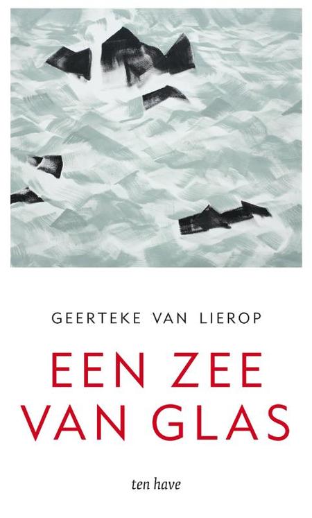 EEN ZEE VAN GLAS - G. van Lierop - Over de dood die het leven dichterbij brengt