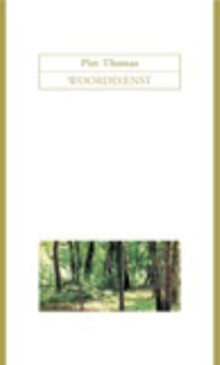 WOORDDIENST - PIET THOMAS