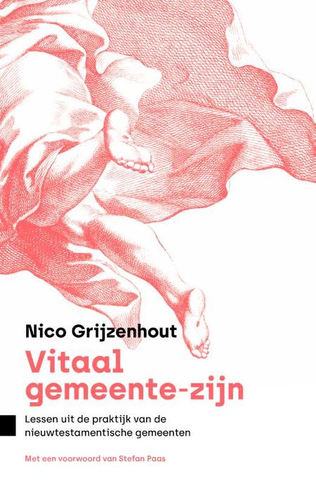 VITALE GEMEENSCHAPPEN - Nico Grijzenhout