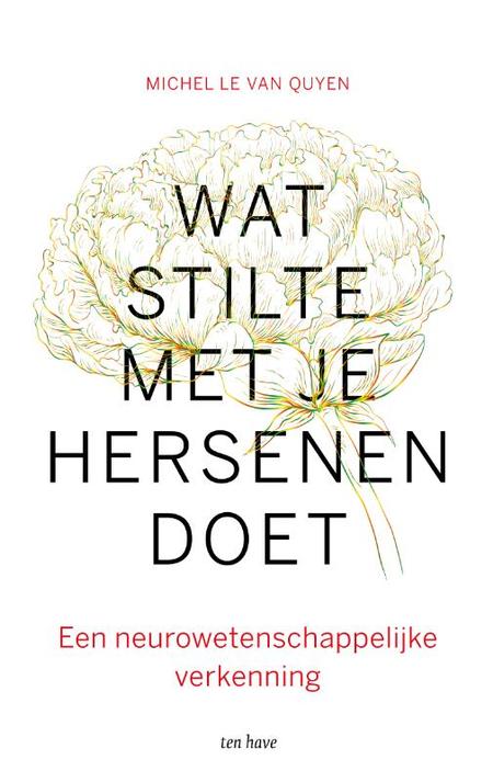 WAT STILTE MET JE HERSENEN DOET - Michel le van Quyen