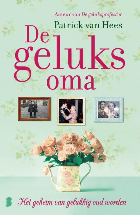 DE GELUKSOMA - Patrick Van Hees