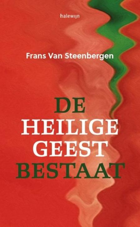 DE HEILIGE GEEST BESTAAT - Frans Van Steenbergen