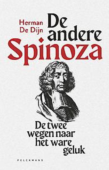 DE ANDERE SPINOZA - Herman De Dijn