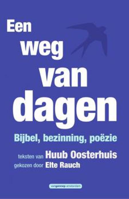 EEN WEG VAN DAGEN - H. Oosterhuis