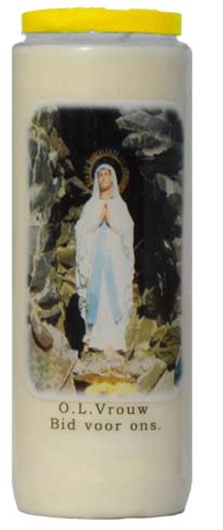 NOVEENKAARS - OLV GROT - bid voor ons -- wit ( 9dagen)