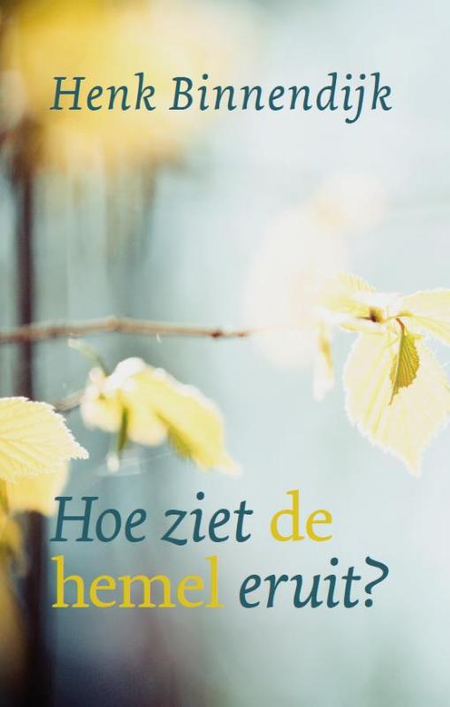 HOE ZIET DE HEMEL ERUIT ? - Henk Binnendijk