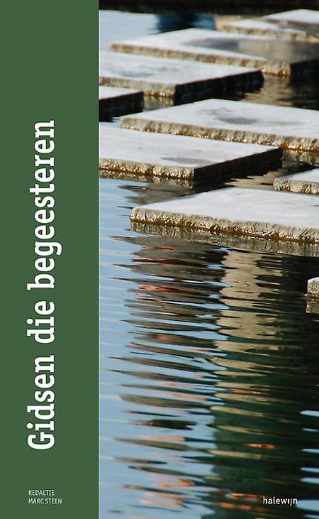GIDSEN DIE BEGEESTEREN - over pastoraal leiderschap - Marc Steen