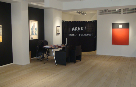 Araki, Delvoye & Christo - GROUP EXPO